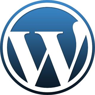 wordpress-performans-hız