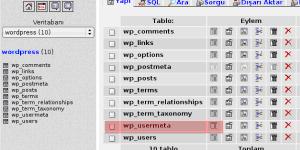 wordpress002.png